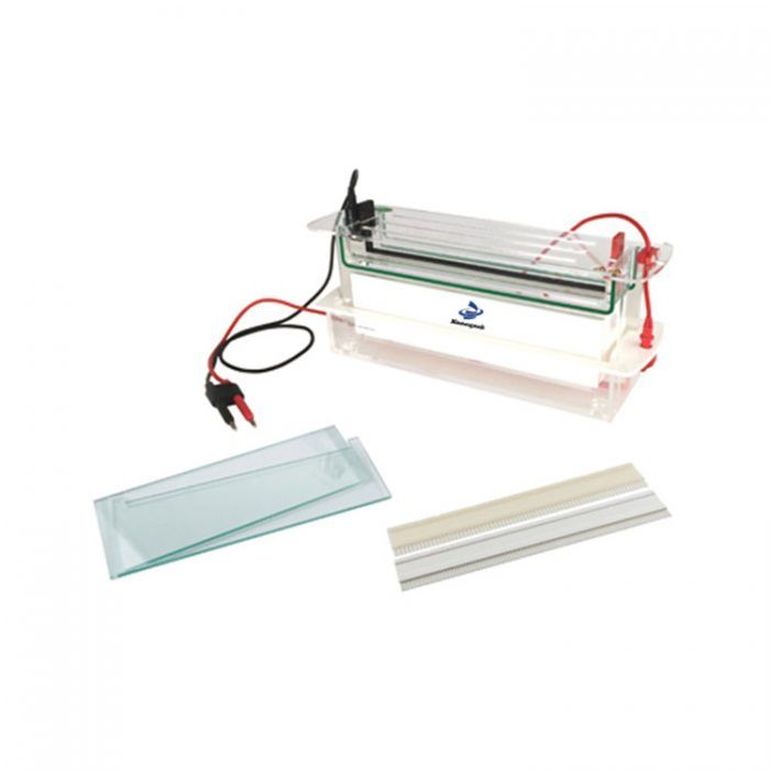 High Throughput Electrophoresis Tank